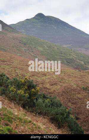 Causey Pike from ascent of Rowling End, Lake District National Park, UK - Stock Photo