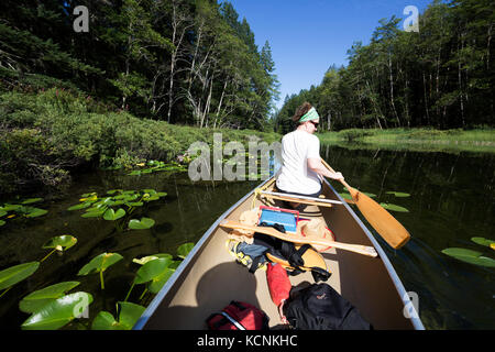 A paddler negotiates her canoe while on Village Bay Lakes on Quadra Island,  British Columbia, Canada. - Stock Photo
