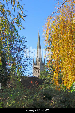 A view of the Cathedral tower and spire through autumn foliage in Norwich, Norfolk, England, United Kingdom. - Stock Photo