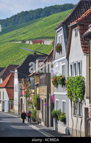 German wine industry: vineyards at Escherndorf, Franconia, Germany - Stock Photo