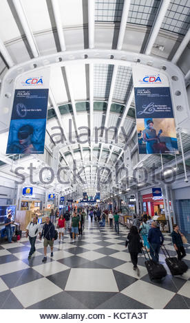 Passenger walking with luggage in Concourse C, Terminal 1, Chicago O'Hare International Airport, Cook County, Illinois, - Stock Photo