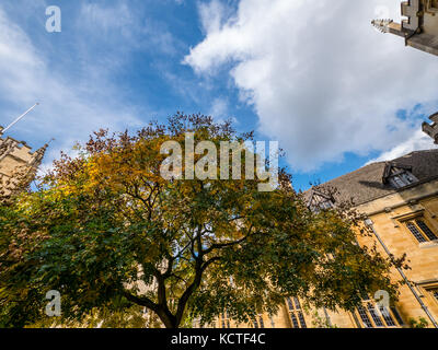 St Johns Quad, Magdalen College, University of Oxford, Oxford, Oxfordshire, England - Stock Photo