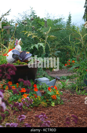 Children\'s Garden - Skagit Valley, Washington State, USA Stock Photo ...
