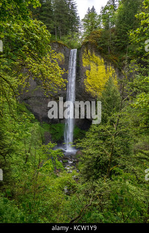 Latourell Falls is a waterfall along the Columbia River Gorge in Oregon, within Guy W. Talbot State Park. The Historic - Stock Photo
