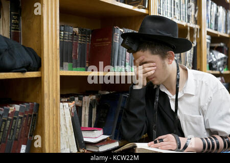 A religious Jewish young man wearing phylacteries at morning prayers in a synagogue in Brooklyn, New York. - Stock Photo