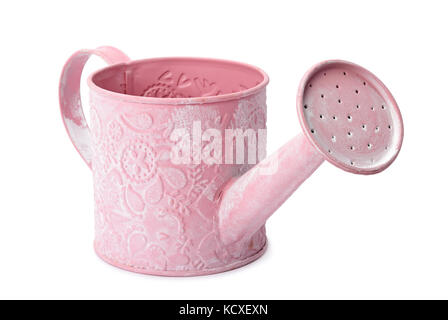 decorative watering can isolated on white background - Stock Photo