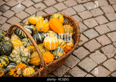 Variety of pumpkins in a basket on the floor - Stock Photo