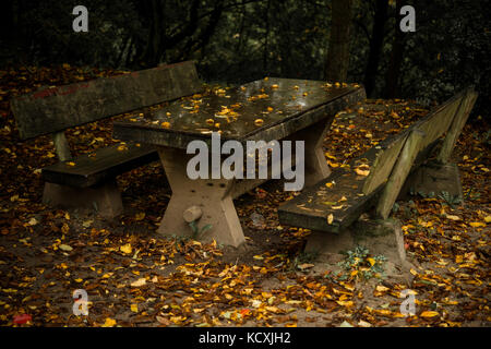 Abandoned bench and table in autumn - Stock Photo