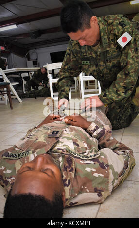 The Combined Joint Task Force – Horn of Africa 443rd Civil Affairs Battalion Functional Specialty Group medics instructed - Stock Photo