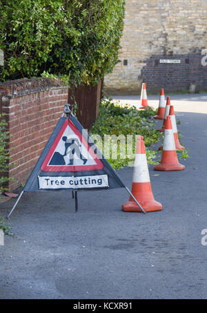 Cutting back overgrown shrubs on a public highway. - Stock Photo