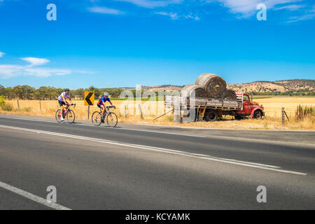 Tanunda, South Australia - January 16, 2016: Two men riding their bicycles along scenic road in Barossa valley near - Stock Photo