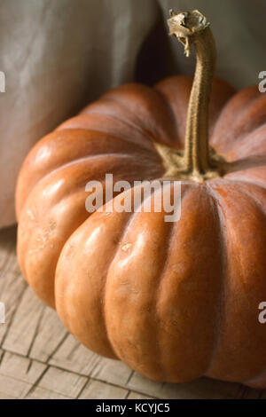 Ripe pumpkin on a wooden background. Rustic style, selective focus. - Stock Photo