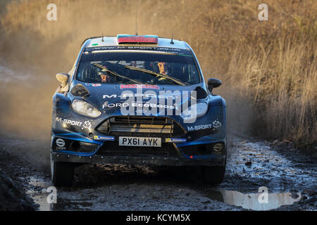 Elfyn Evans at the Wales World Rally Championship (WRC) Rally GB  in Wales, UK - Stock Photo