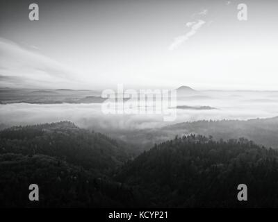Fall morning mist. The sandstone cliff above treetops of forest valley, daybreak, Sun at horizon. Hills increased - Stock Photo