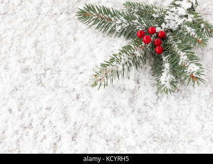 Christmas tree fir twig with red holly berries covered with snowflakes and laying on snow. - Stock Photo