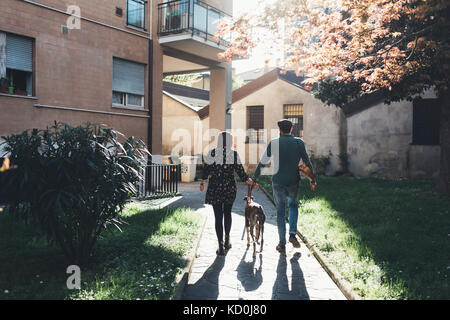 Rear view of couple walking dog in city park - Stock Photo