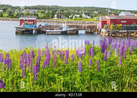 Fishing boat tied up at wharf, Louisbourg, Cape Breton, Nova Scotia, Canada - Stock Photo