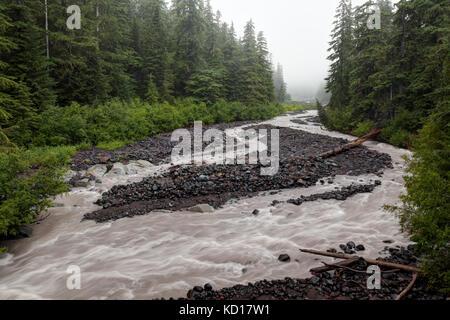 White River running through forest on overcast day, Mount Rainier National Park, Washington, USA - Stock Photo