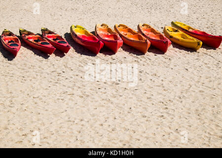 Hire canoes lined up on a beach looking well used at the end of the season. - Stock Photo