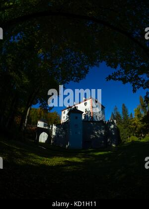 Black framed in dark Black forest trees nature and castle Sneznik in Slovenia - Stock Photo