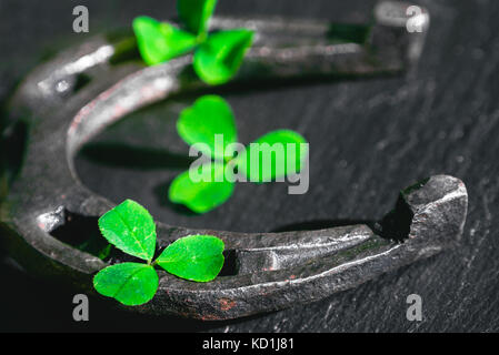 Horseshoe and petals shamrocks on a dark background with shallow depth of field - Stock Photo