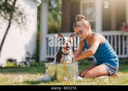 Girl washing dog in bucket - Stock Photo
