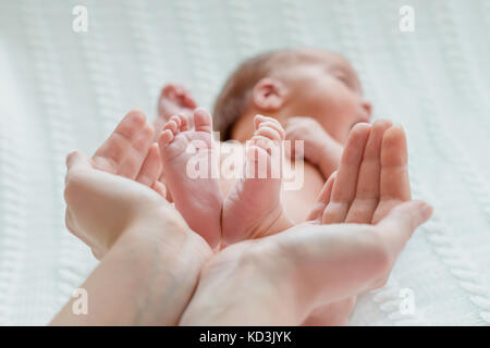 Baby feet in mother hands - Stock Photo