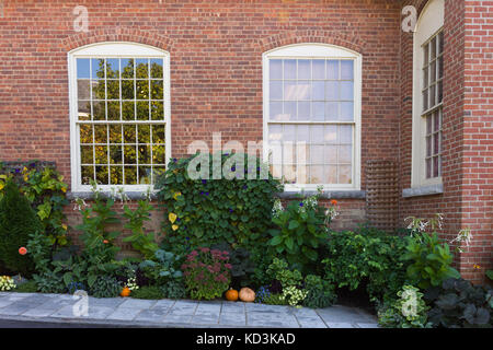 A fall themed garden in front of a brick building with shiny multi-paned windows in the background. - Stock Photo