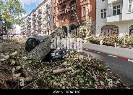 Storm Xavier, damage by falling tree | Sturmtief  Xavier wuetet ueber Deutschland am 5.10.2017 , umgestuerzter Baum - Stock Photo