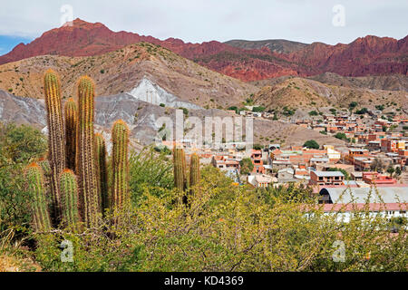 Cacti and aerial view over Tupiza, capital city of the Sud Chichas Province within the Potosí Department, Bolivia - Stock Photo