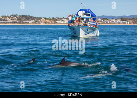 PORTUGAL - SEPTEMBER 12TH 2017: A Dolphin watching boat trip off the coast of Lagos in the Algarve, Portugal, on - Stock Photo