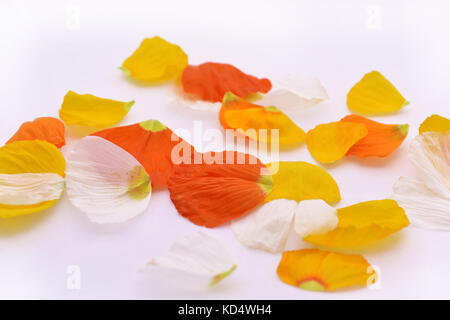 Music abstraction. Autumn leaves on white paper. - Stock Photo