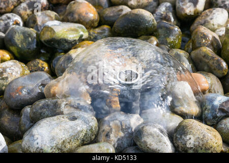 Rocks under a small water fountain - Stock Photo