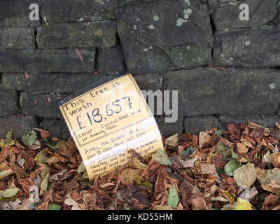 A discarded sign put up by Sheffield tree protesters calculating the mature trees financial value discarded in autumn - Stock Photo