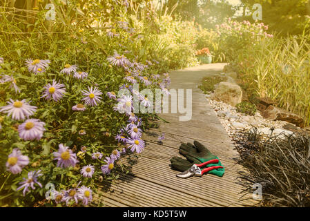 Secateurs and garden gloves on decking. - Stock Photo