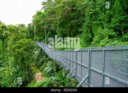 Chiang Mai, Thailand, August 24, 2017: Tree Canopy Walkway, The Iron Bridge in the tropical forest at Queen Sirikit - Stock Photo