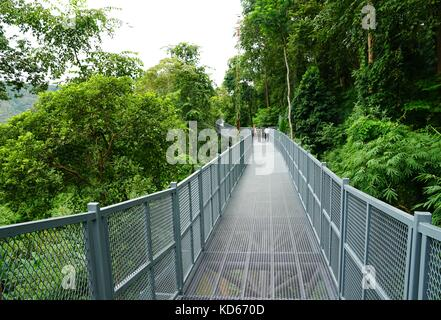 Tree Canopy Walkway, The Iron Bridge in the tropical forest at Queen Sirikit Botanic Garden, Chiang Mai, Thailand - Stock Photo