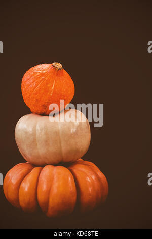 Stack of pumpkins against black background - Stock Photo