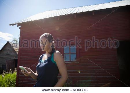 Female farmer texting with cell phone outside barn on sunny farm - Stock Photo