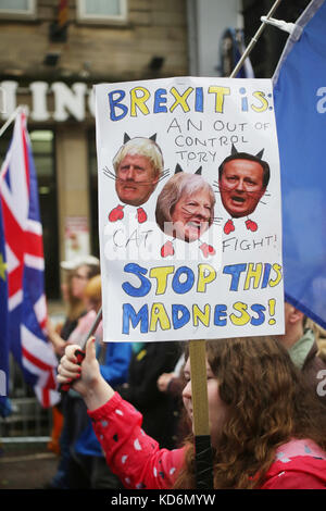 Brexit stop this madness placard at Manchester #StopBrexit demo - Stock Photo
