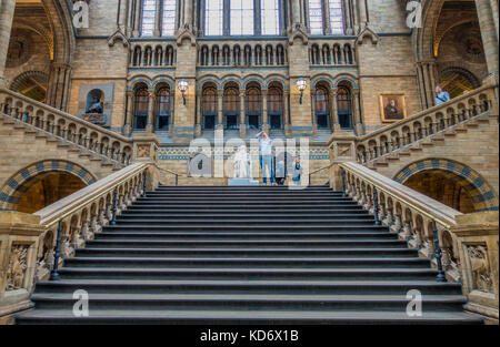 Staircase in the main hall, leading up to the Charles Darwin statue on the landing, at the Natural History Museum, - Stock Photo