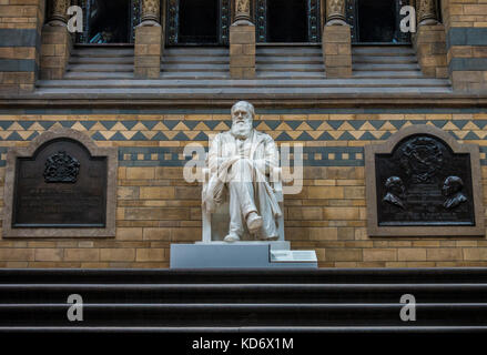 Historic Charles Darwin, Victorian era (1885), marble statue, on the landing in the main hall of the Natural History - Stock Photo