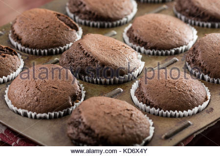 Selective focus on fresh baked chocolate cup cakes in the baking tray. - Stock Photo