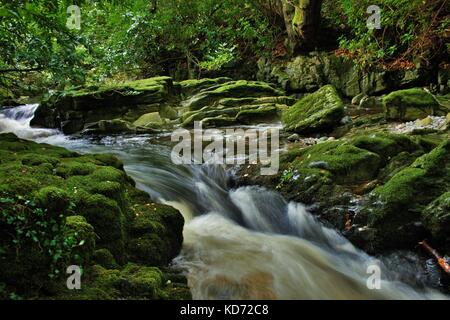 Long Exposure Shot Of River Flowing Through Rocks And Trees In Tullymore Forest, Northern Ireland - Stock Photo