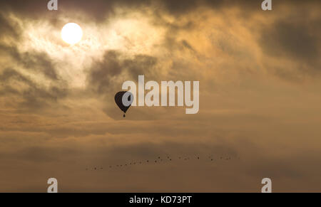 Hot air balloon at sunset, rising high above flock of birds, amidst fluffy clouds. Bright sun shines through upper - Stock Photo