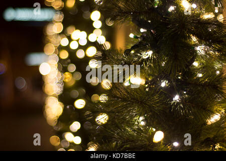 Christmas Pine and blurred lights bokeh effect, detail - Stock Photo