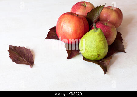Ripe fruits apples, pears and several yellow autumn leaves on white wooden table. - Stock Photo