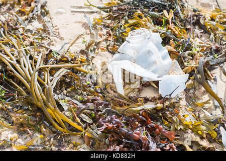 plastic bottle on Orkney beach, Scotland, UK - Stock Photo