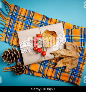 Autumn leaves and pine cones on a blue background. Autumn background . - Stock Photo