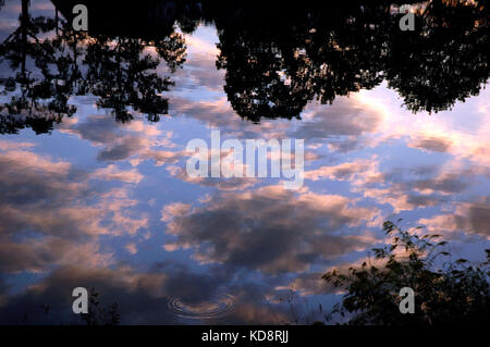 Reflections of clouds in the evening sun on the river Neckar, Stuttgart, Baden-Würtenberg, Germany